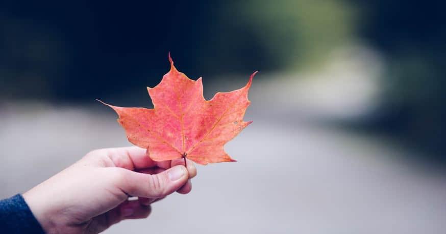 Cómo dar el primer paso para lograr el cambio en tu vida