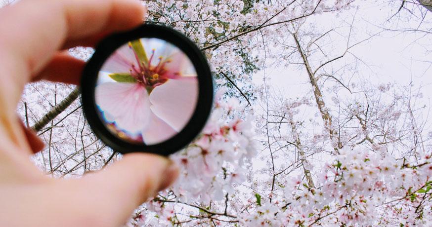 La importancia de aprender a ver el lado positivo de las cosas